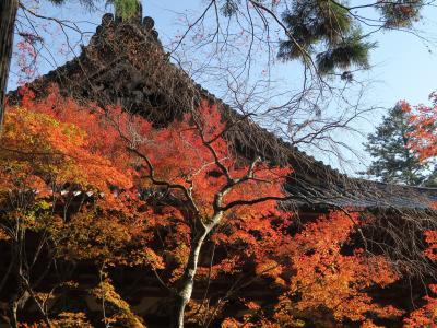 ☆京都(1)洛北