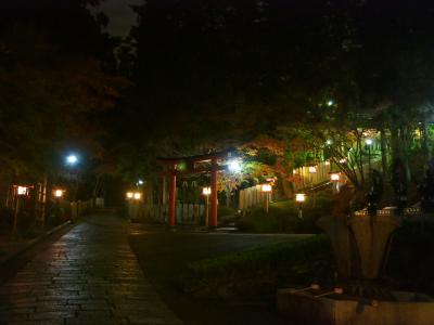奈良で紅葉見納め 霊山寺から東大寺界隈