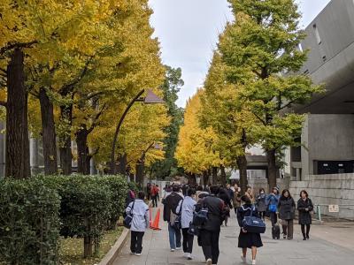 渋谷~上野~横浜!大人の休日散歩。