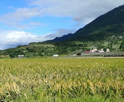 初めての台湾 花蓮から台東ドライブ