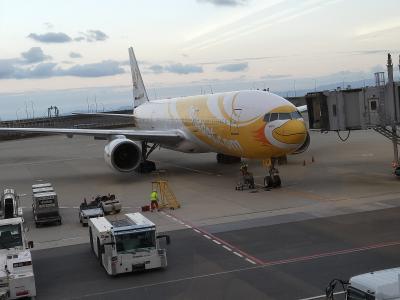 今回はノックスクートで訪タイです