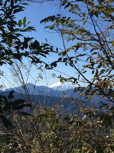 高尾山で紅葉ハイキング