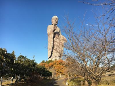 2019.12 秋晴れ散歩 超級大!牛久大仏