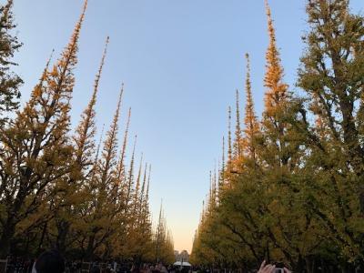 神宮外苑散策から新国立競技場とオリンピックミュージアム