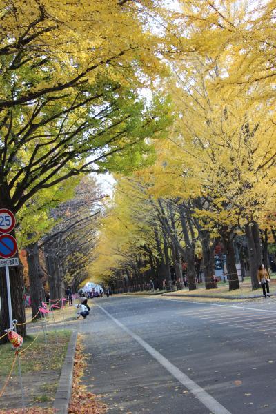 北海道旅行記その2 イチョウ並木と赤レンガ・スーパーとかち3号で帯広へ