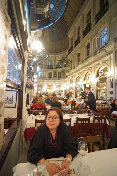 トラピックス「トルコ大周遊15日間」(28)イスティクラール通りに遊び、チチェッキ・パサジュで夕食を食べた後はペラ・パレスのバーに沈没する。