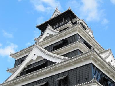 熊本城 特別公開第一弾を見に行きました