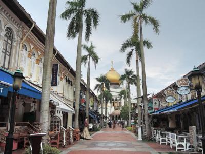 2019.11.20~23 マリーナベイサンズに泊まるシンガポール4日間 その2 ~ アラブストリートで右往左往 ~