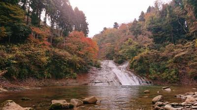 日帰り旅行 千葉県 ちょっと早かった養老渓谷の紅葉狩り