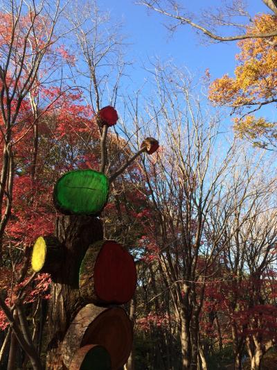 自転車でぐるり☆武蔵丘陵森林公園