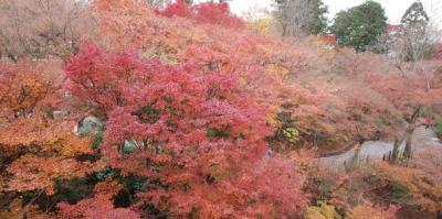 初冬の京都