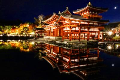 ブララブコー  「京都の紅葉を狩り尽くせ!~mission4 紅葉ライトアップを攻略せよ!!平等院鳳凰堂・東寺 編~」