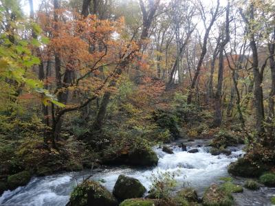 紅葉の奥入瀬を歩く。