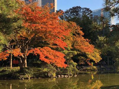 2019秋 紅葉の日比谷公園