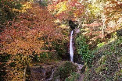 破風山~華厳の滝 紅葉と冬桜のコラボ 日帰り登山