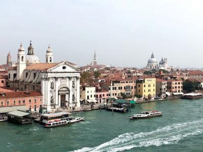 MSCシンフォニア:アドリア海クルーズ&イタリア旅行 ⑩ ~下船後ナポリへ移動・ダニ症状が酷くなる~