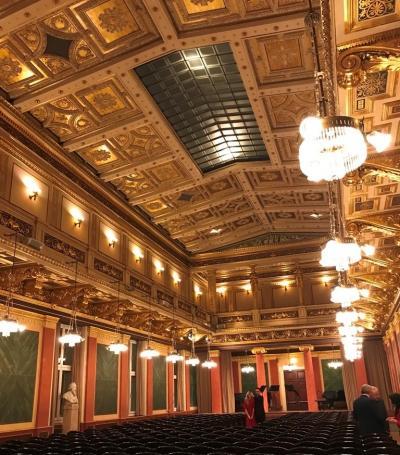 初冬のウィーン・ケルン・マインツの旅~  ②楽友協会ブラームスホールで弦楽四重奏のコンサート しかし・・