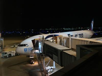 未知のエジプト航空ビジネス乗っちゃいました!