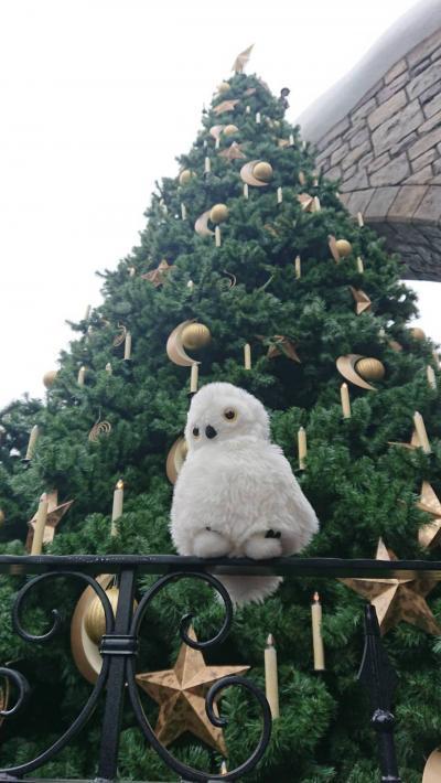 今年も来ちゃいました!クリスマスユニバーサル!!