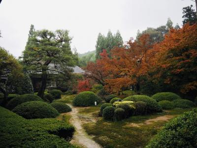 京都 12月初旬の紅葉