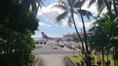 4泊6日 オバサンのハワイひとり旅 ⑤