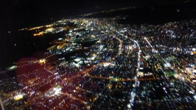 大阪2つの新ホテル宿泊目的2泊3日の旅【大阪/伊丹~福岡 JAL2061便搭乗編】