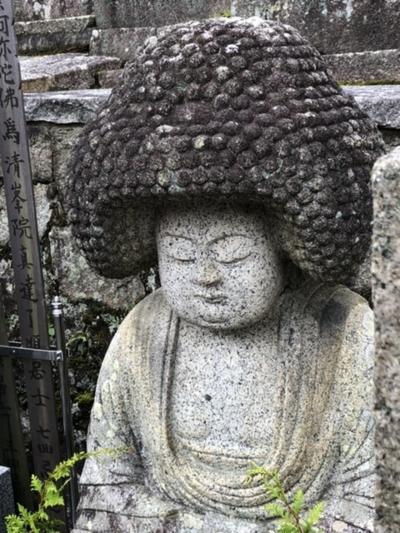 11月末 うさぎの寺と金戒光明寺(黒谷さん)