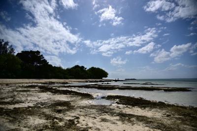 竹富島放浪記 石垣島からオリオンビール持参で竹富島へ