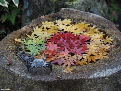 2019 鎌倉の紅葉狩りウォーク(その1)