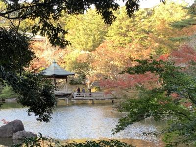 成田公園の紅葉
