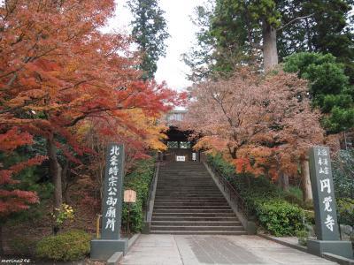 2019 鎌倉の紅葉狩りウォーク(その2)