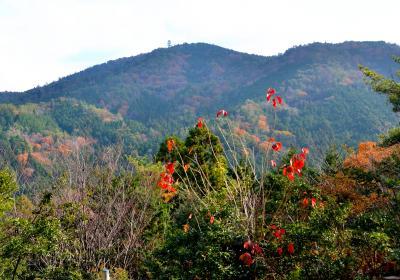 初冬の六所山と焙烙山