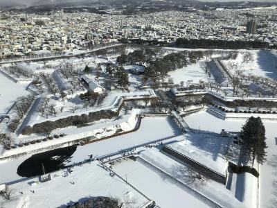 2019年12月  函館2日目 時々雪だが、五稜郭タワーの時はいい天気でヒトデ形が綺麗に見えた
