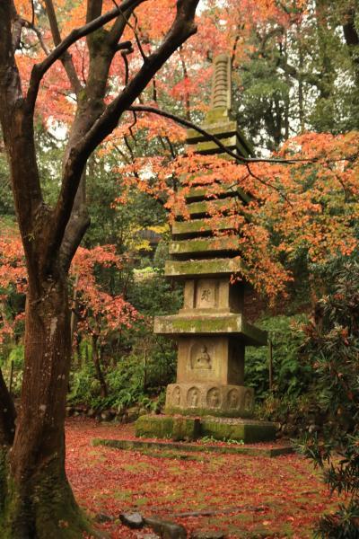 三井ガーデンホテル新町別邸に泊る5日間♪ 暮らすように旅をした晩秋の京都♪ 2日目八坂神社、祇園、清水寺、円山公園、知恩院