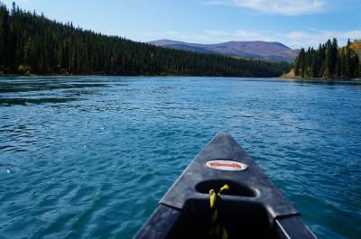 夏のユーコンを満喫 オーロラ・紅葉・カヌー・ゴールドラッシュ跡 (Fascinating wildness, Yukon)