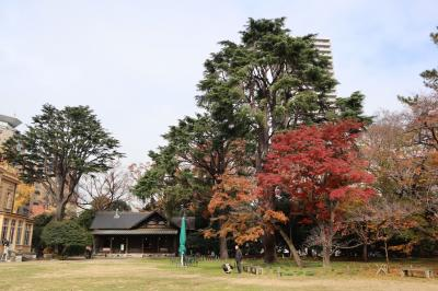 旧岩崎邸庭園・・洋館の外観~洋式庭園~撞球室をめぐります。