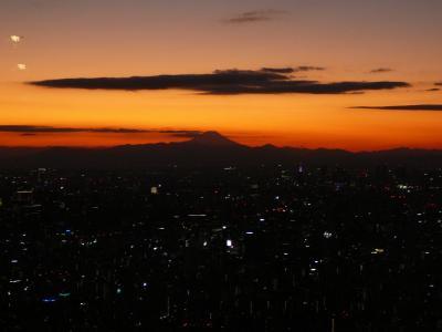 東京を観光案内する3日間