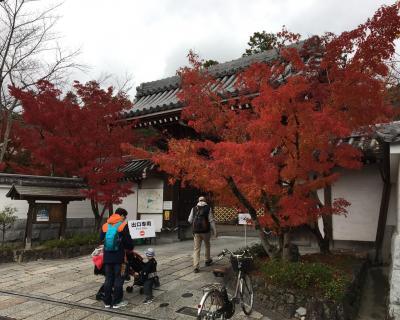 久々の京都 (その5) 哲学の道!