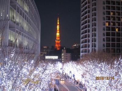 東京 <芝公園・六本木>クリスマスマーケット&<けやき坂>イルミネーション