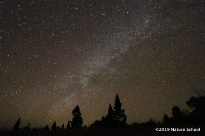 ハワイ6日目 やっぱり眠かった星空観測&サンライズツアー