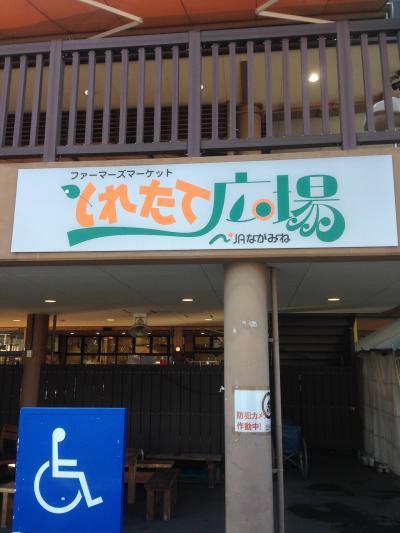 大阪からまたまた和歌山へ