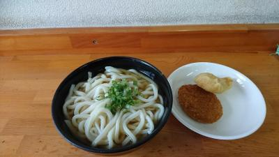 せっかく大阪まで来たのだから讃岐うどんを食べるためだけに高松に足を伸ばしてみた