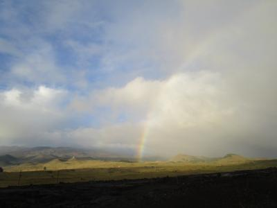 二度目のハワイ島 11月23日(土)