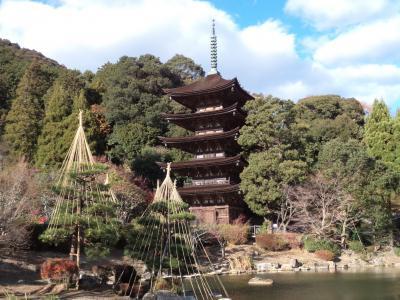 2019冬 西の京、山口を歩く。続100名城山口編(大内氏館跡)