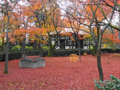 2019冬 遅い紅葉と美食を求めて京の東を歩く