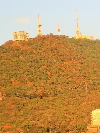 長崎-7 長崎港往復 高速船~有川港~高波/時化で欠航! ☆五島列島行き断念・代替案は?