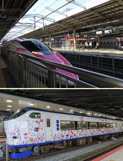 ハローキティプロジェクト完了:ミッション② 孫と一緒に、新幹線とはるかを目撃せよ!