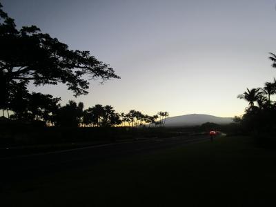 二度目のハワイ島 11月25日(月)-26日(火)
