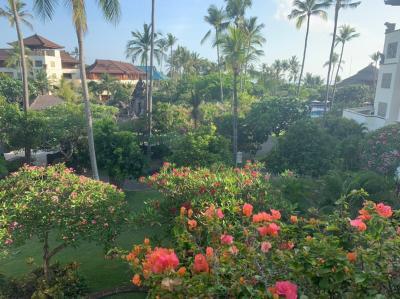 2019年 初のバリ島 ハワイ好きの私もはまったバリ④ 帰国