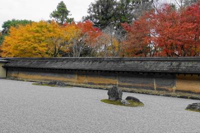 2019冬 御土居と龍安寺で紅葉を楽しむ